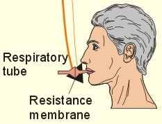 a case study on human respiratory physiology answers