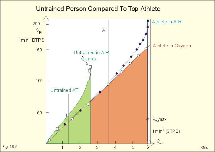 Image result for better o2 in athletes