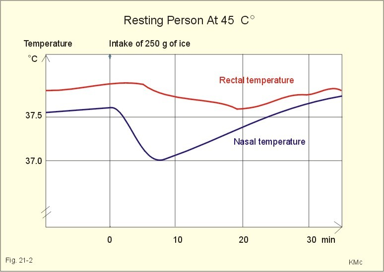 of ice reduces the temperature in a warm person resting at 45oc