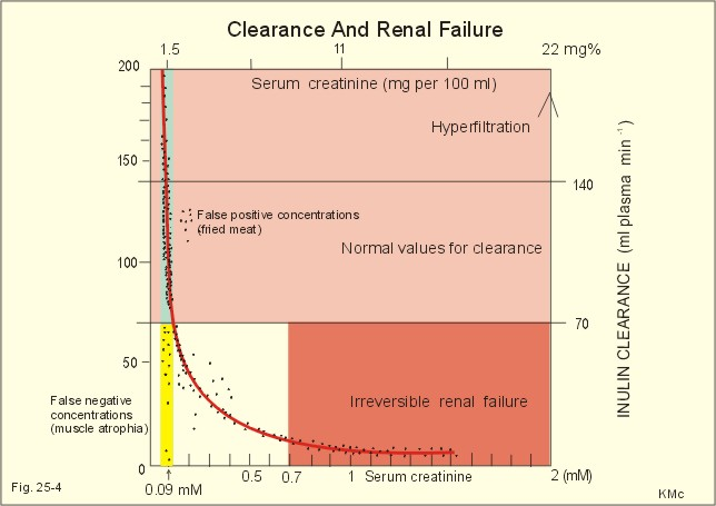 Creatinine clearance calculator bmi